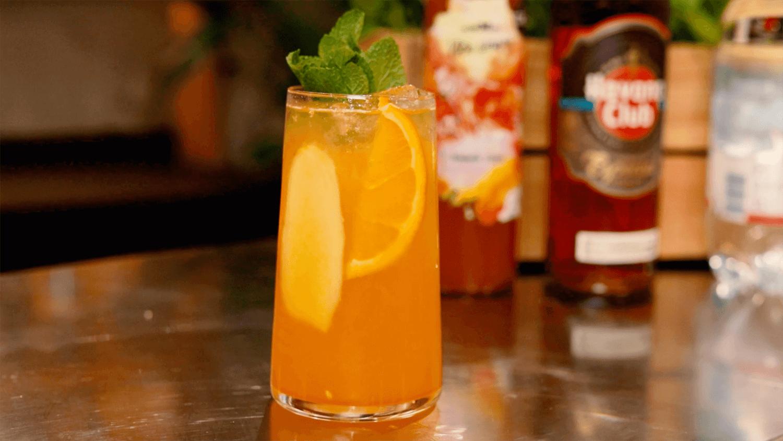 Vlčia limonáda marhuľa – zázvor